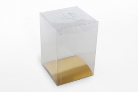 clear plastic boxes packaging